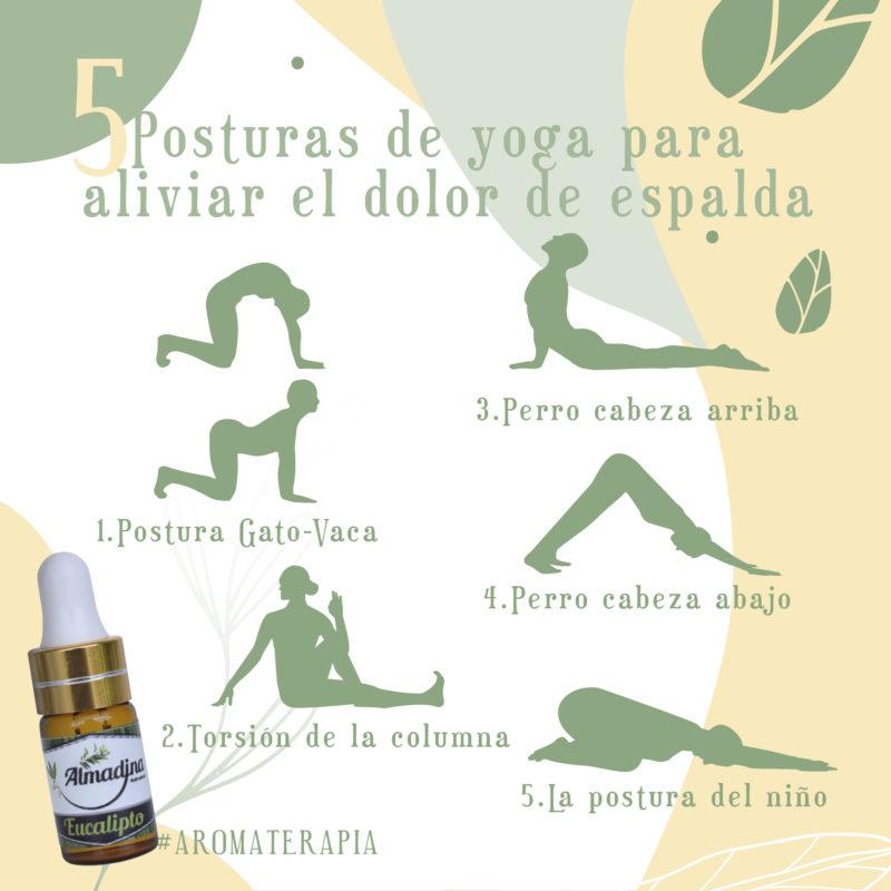 Postura de Yoga para aliviar el dolor de Espalda + aceite de eucalipto